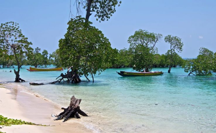 Best of andaman and nicobar islands Tour Packages - Book honeymoon ,family,adventure tour packages to Best of andaman and nicobar islands  Travel Knits